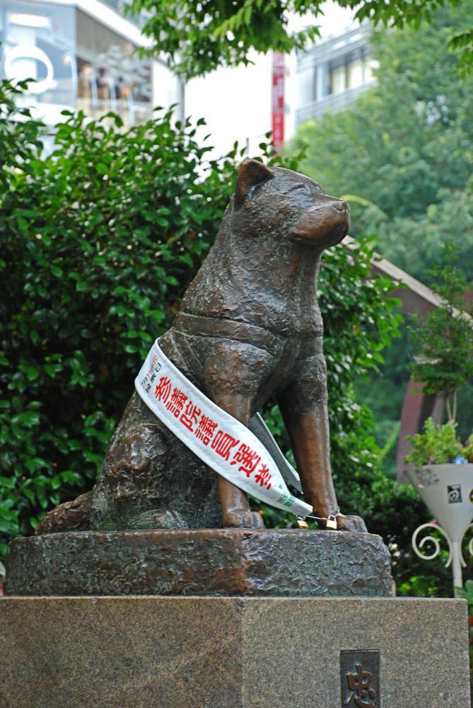 Tokio, Shibuya. La famosa estatua de Hachiko.