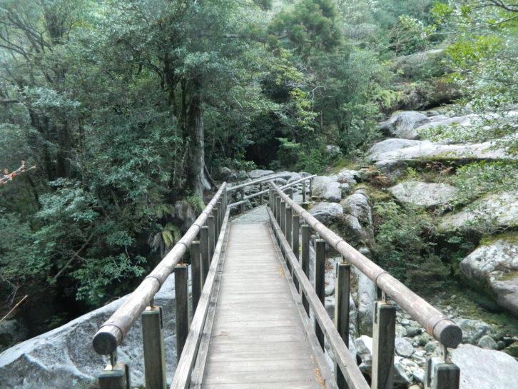 No sería una aventura sino se cruza por un puente