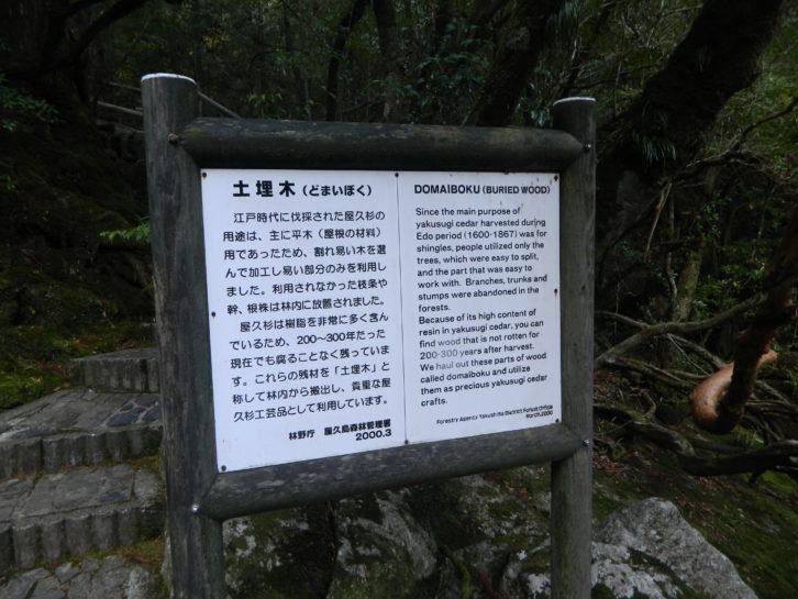 Daimoboku (Madera Enterrada) a partir del Cedro de Yakusugi